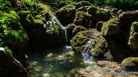 1 Дорога из Гуамки на альпику (5)